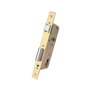 Access control. Antipanic lock in door with rectangular edge